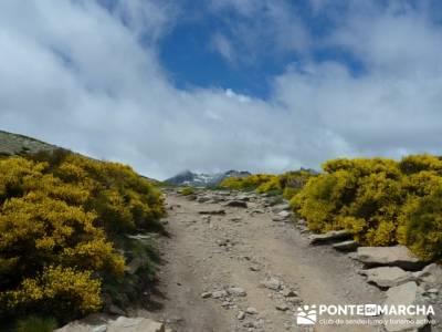 Parque Regional Sierra de Gredos - Laguna Grande de Gredos;viajes noviembre;madrid senderismo